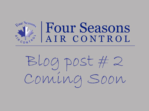 Four Seasons Blog Post 2