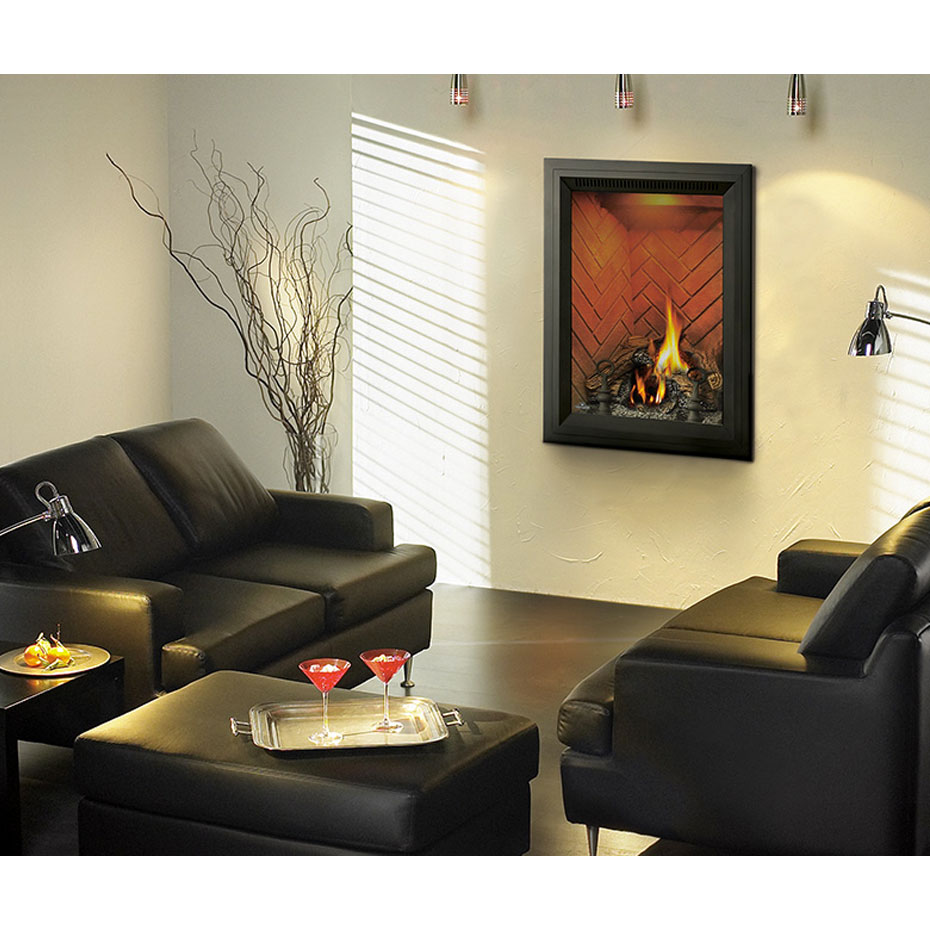 GD82PA Direct Vent Gas Fireplace Four Seasons Air Control