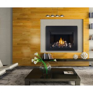 Napoleon Gas Powered Direct Vent Fireplace Catalogue Licensed Dealer